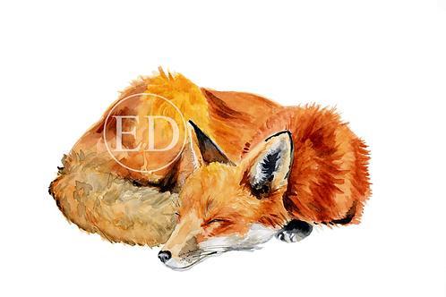 """""""Sleepy Fox"""" Art Print A5"""