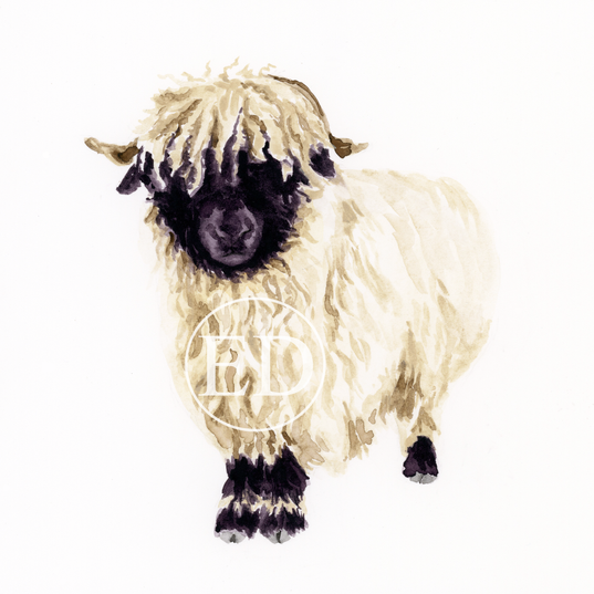 Valais Blacknose Sheep.png