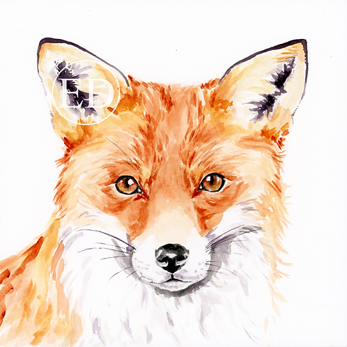 """Curious Fox"" Art Print 10x10"""