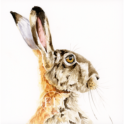 Thoughtful Hare.png