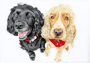 Happy Spaniels.png