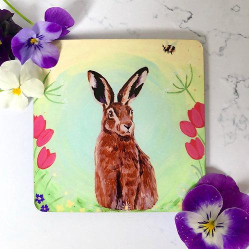 Spring Hare Coaster