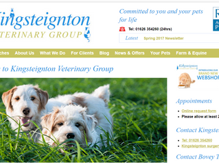 Case Study: An Analysis of the Kingsteignton Veterinary Group Website