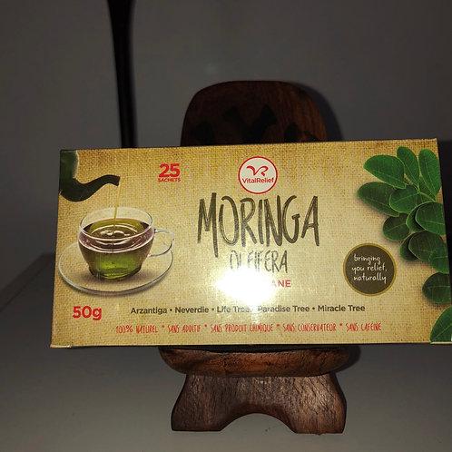Thé au Moringa