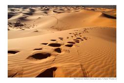 MarruecosD02.jpg