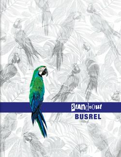 Busrel