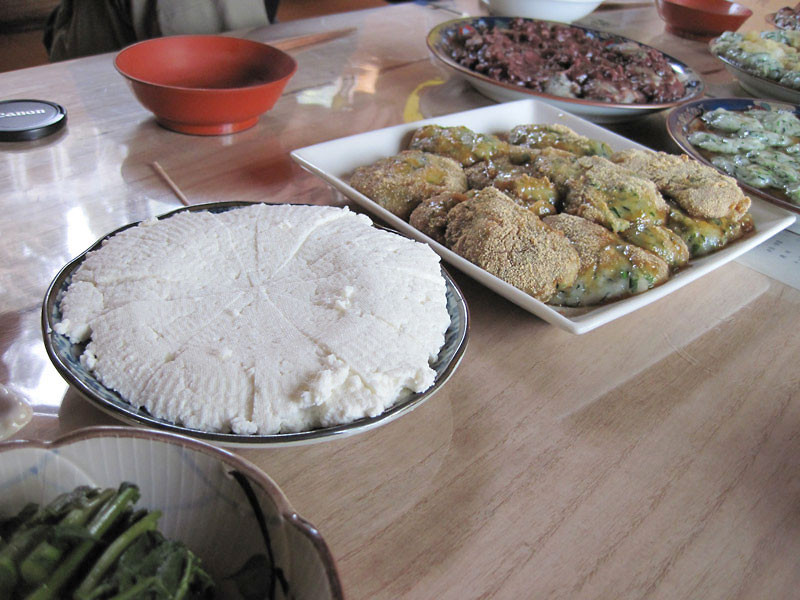 hojo_cottage-cheese
