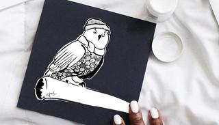 Surf Owl