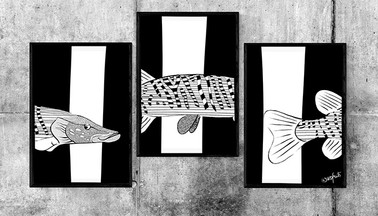 Fish Xing Illustration