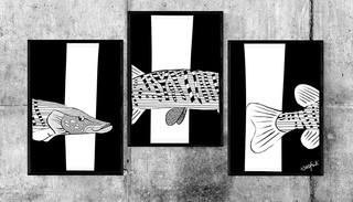 Fish Xing Illustration