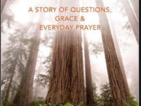 Grace-filled Recommendation: Found: A Story of Questions, Grace, and Everyday Prayer by Micha Boyett