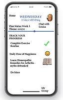 app for mend.JPG