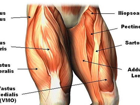 Build All Day Leg Power With This One Exercise