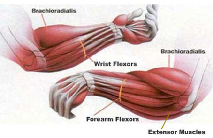Monday Mobility: Open Up Those Tight Wrists