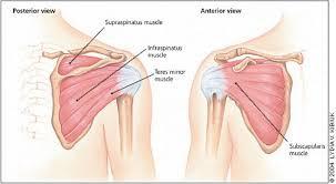 Efficient shoulder care