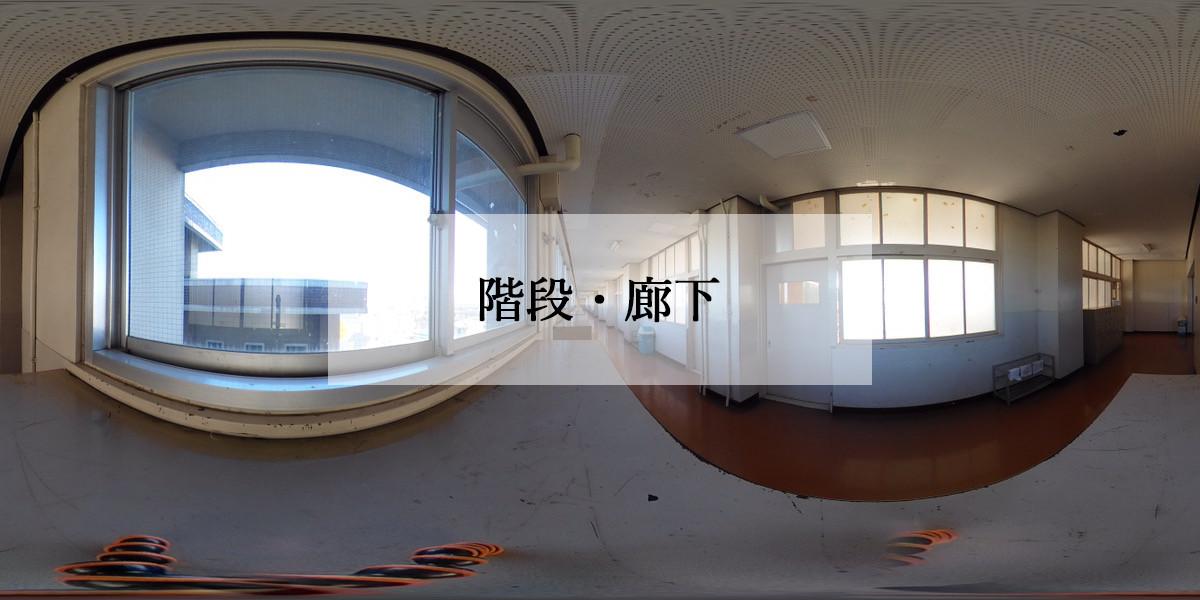 IMG_1194.jpg