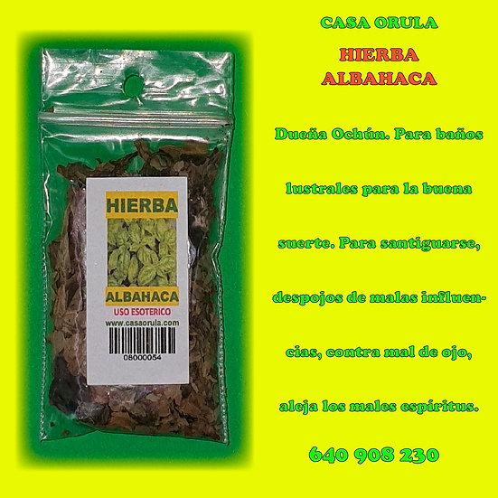 HIERBA ALBAHACA