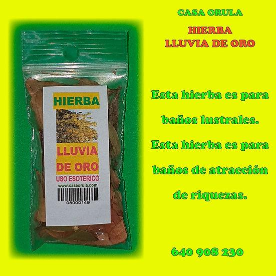 HIERBA LLUVIA DE ORO