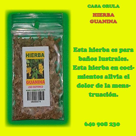 HIERBA GUANINA