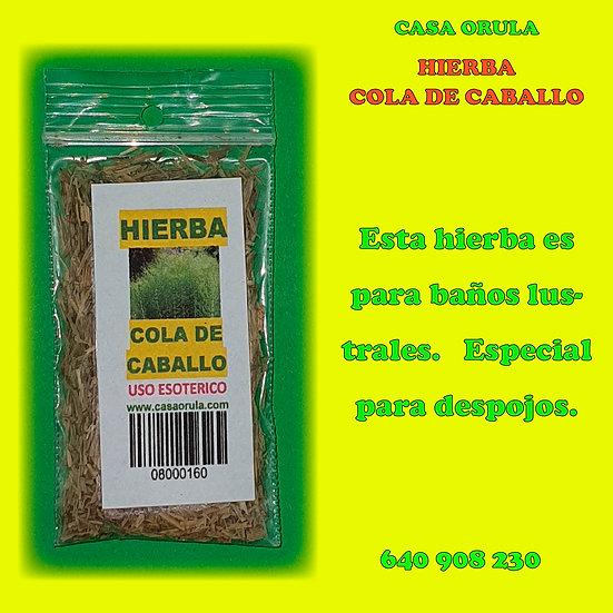 HIERBA COLA DE CABALLO