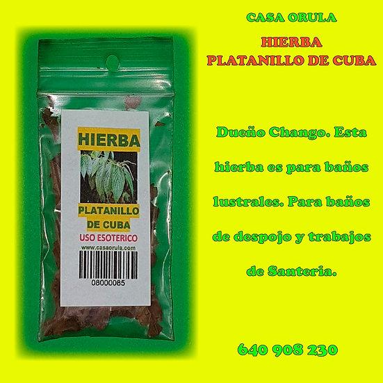 HIERBA PLATANILLO DE CUBA