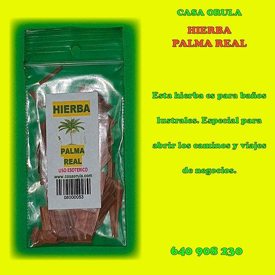 HIERBA PALMA REAL