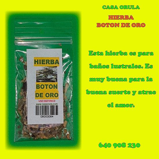 HIERBA BOTON DE ORO