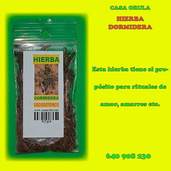 HIERBA DORMIDERA