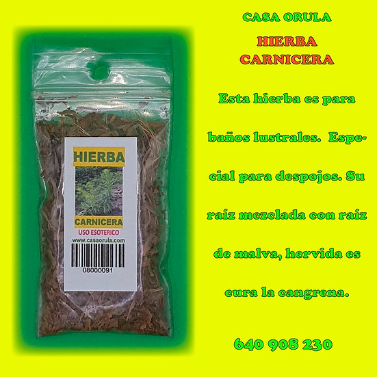 HIERBA CARNICERA