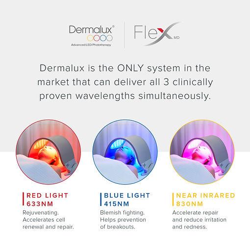 FLEX SM Generic13.jpg