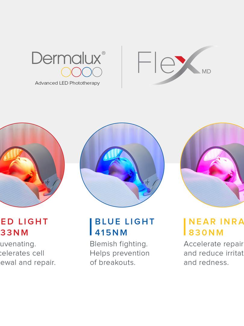 FLEX SM Generic12.jpg