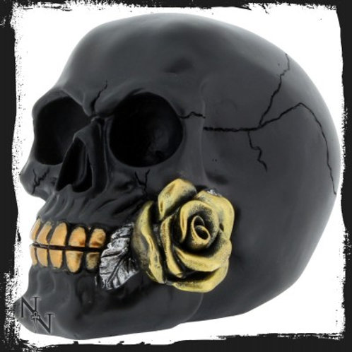 Black Rose from the Dead 15cm Skull