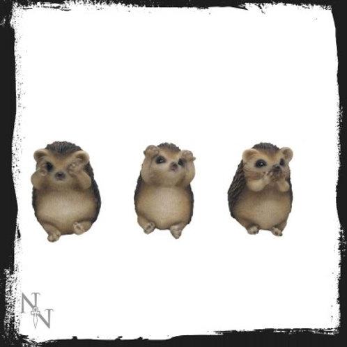 Three wise hedgehog