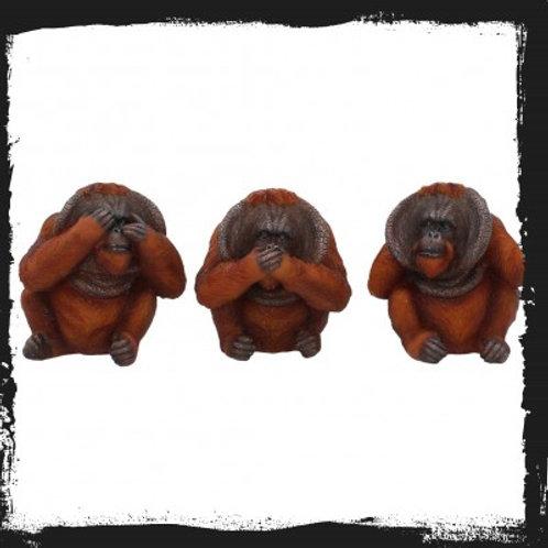 Three wise orangutans