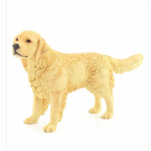 Golden retriever by leonardo