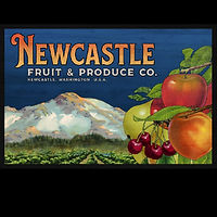 Newcastle Fruit & Produce web.jpg