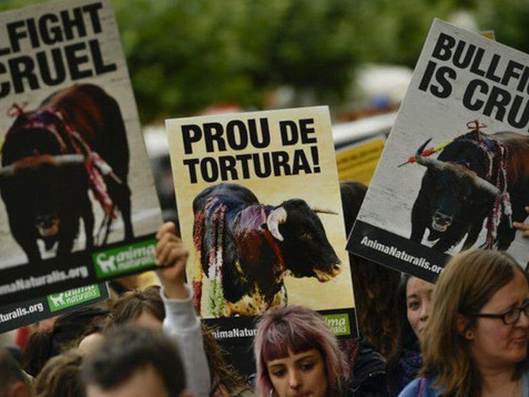 La Unesco excluye el asesinato de toros en plazas públicas como Patrimonio Inmaterial Cultural