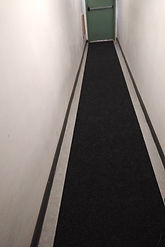 Condominium Carpet for A hall