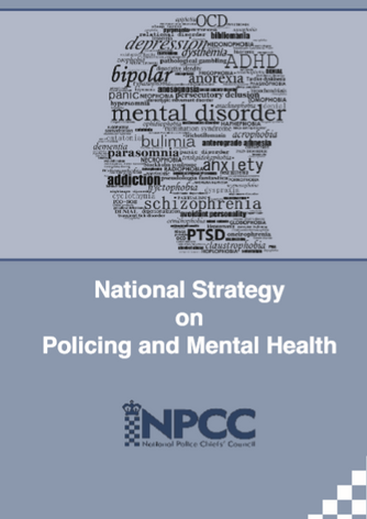 National police strategy