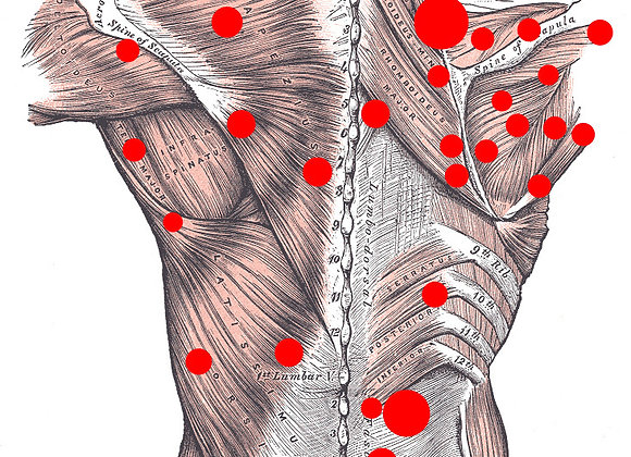 Bon cadeau Massage Neuro-Musculaire Corps - CarpeDiem Wellness Avry-sur-Matran