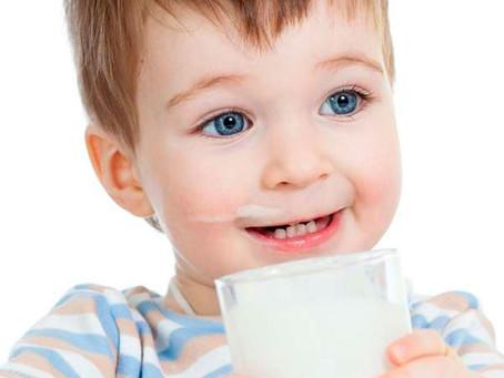 Alternativas ao consumo do leite