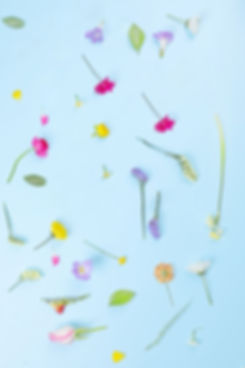 Composition fleur