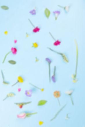 花のコンポジション