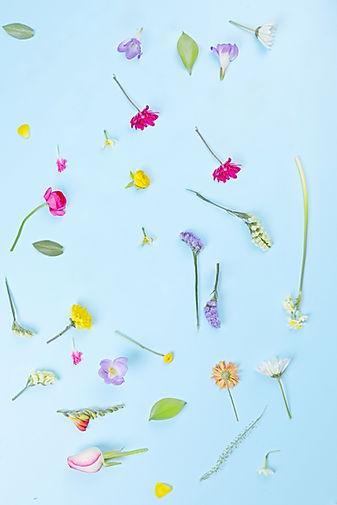 Blumen-Aufbau