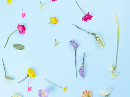 Was tun bei Frühjahrsmüdigkeit? Zuerst wie immer mal atmen, bewegen..