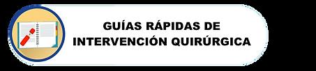 GUIAS RAPIDAS.png