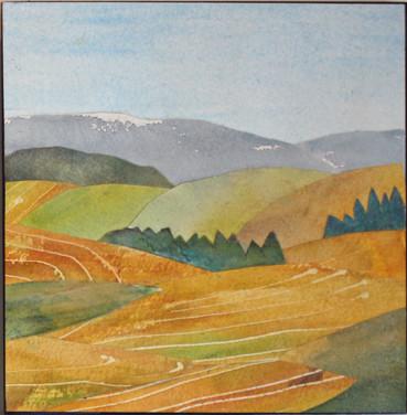 Blue Mountain Harvest 2