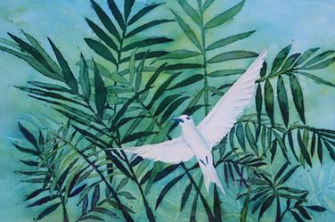 Fern Tern