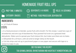 2-Ingredient Homemade Fruit Roll Ups