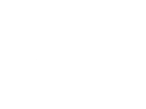 NEW AE LOGO white LARGE.png
